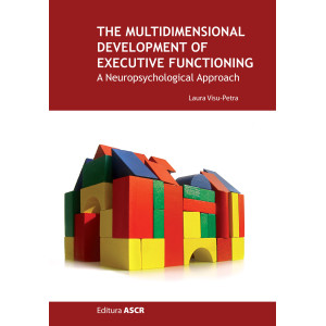 The multidimensional development of executive functioning